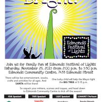 Festival of Lights-2015